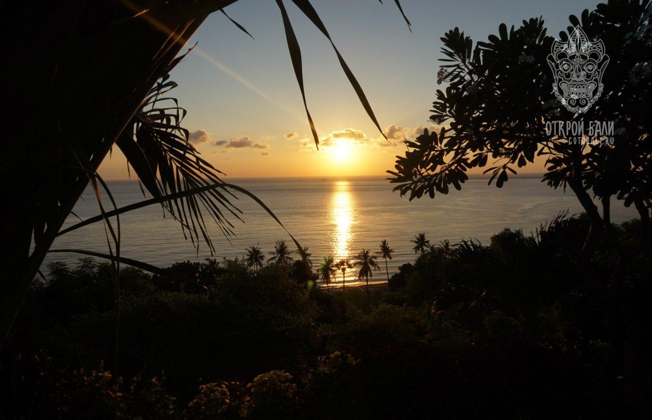 Амед (Amed) Бали